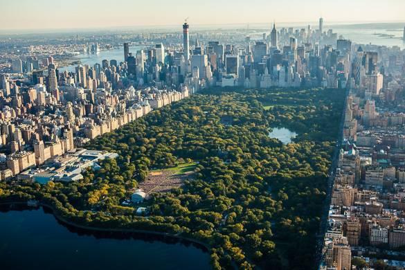 Planes gratis en Nueva York